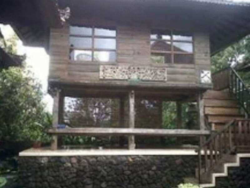 Munduk Sari Nature Villa ホテル詳細