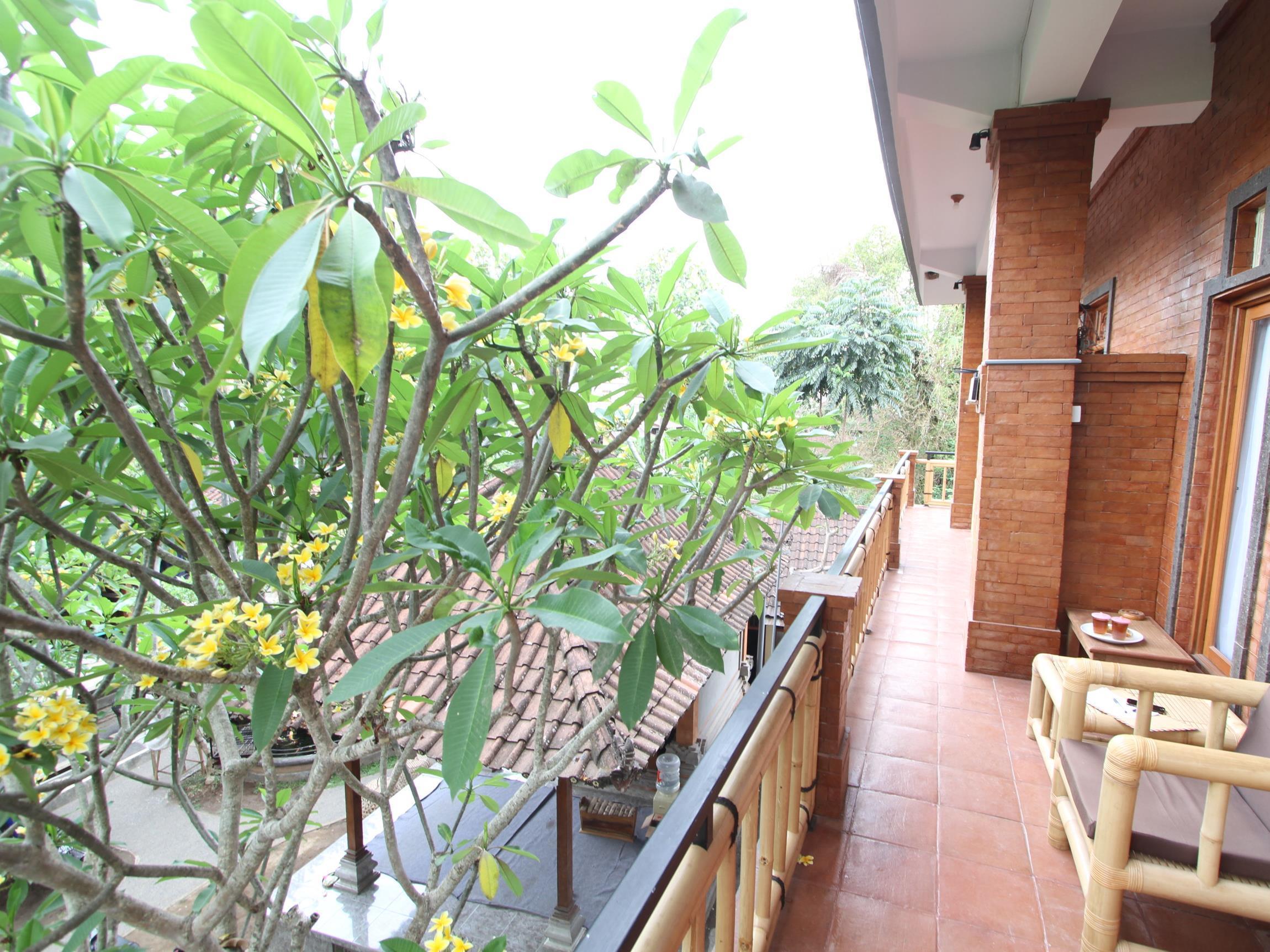 Citrus Tree Rooms - Batan Kangin ホテル詳細