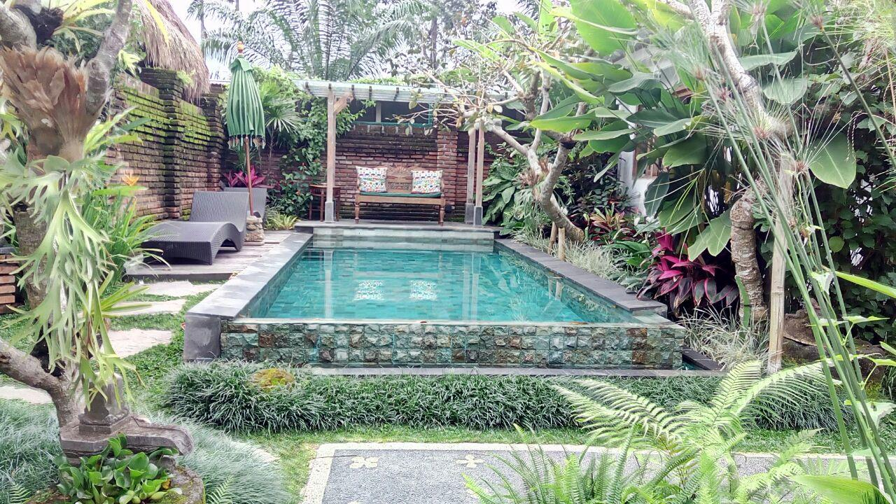 Love Villa at Imagine Bali ホテル詳細
