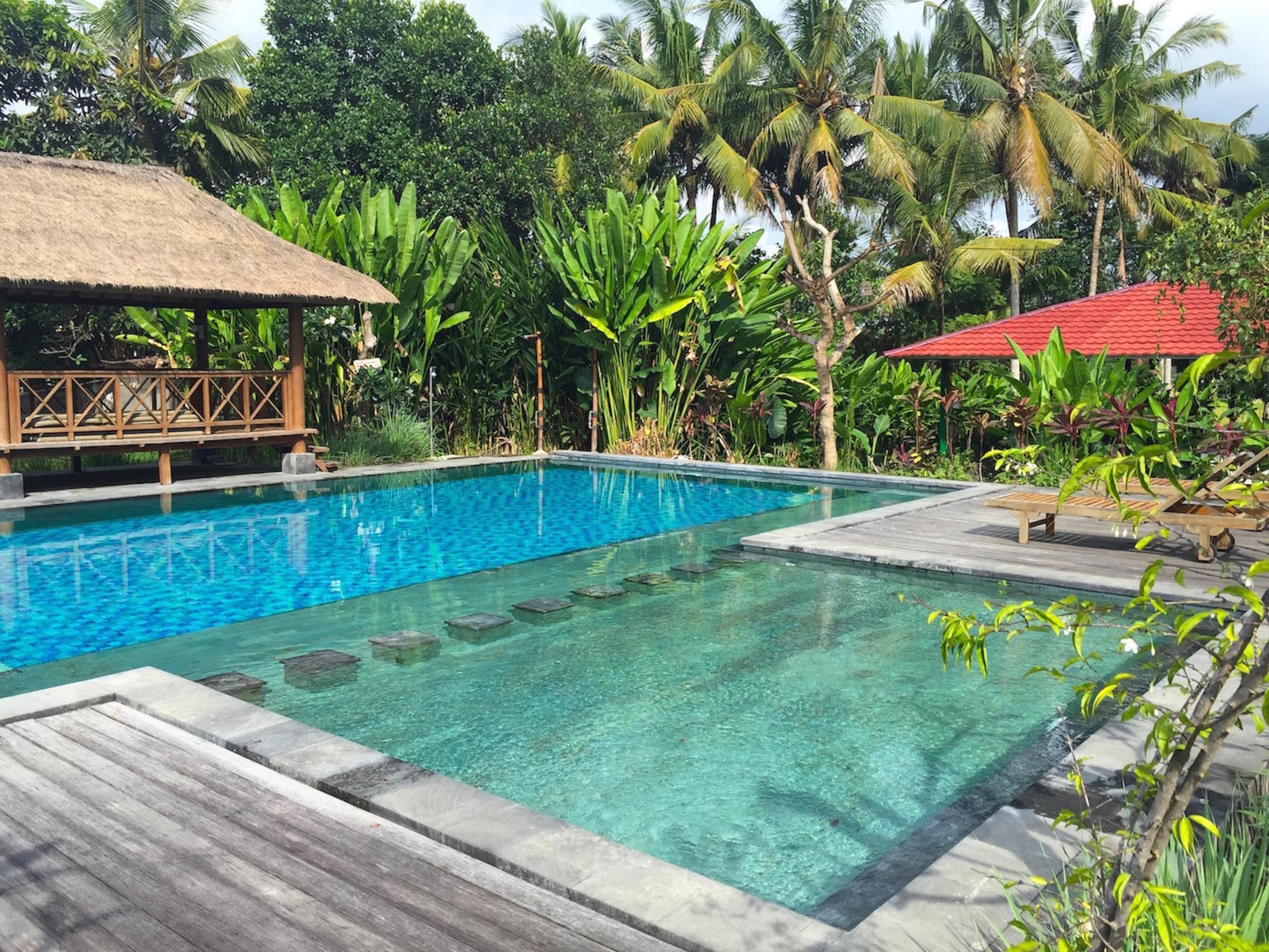 Suly Vegetarian Resort & Spa ホテル詳細