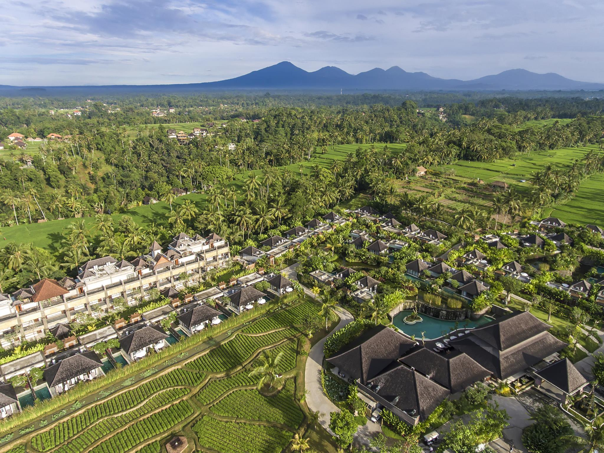 Visesa Ubud Resort ホテル詳細