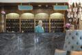 Al Bustan Hotel ホテル詳細