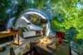 Bubble Lodge Ile aux Cerfs ホテル詳細